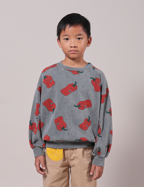 [BOBO CHOSES] Vote for Pepper All Over Sweatshirt [2-3y]